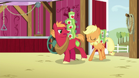 Applejack and Big Mac carrying blight spray cans S6E23