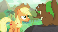 Applejack trying to understand squirrel S8E23