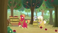 Big Mac looks shocked at tosses apple S9E10
