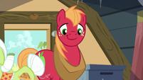 Big Mac smiling S5E17