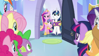 Cadance and Shining Armor eager to help S9E25