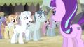 "Double Diamond ""you said cutie marks were evil!"" S5E2.png"