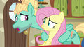 Fluttershy and Zephyr Breeze, brother and sister S6E11.png