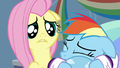 Fluttershy feels sorry for Rainbow Dash S5E5.png