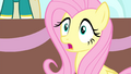 Fluttershy has an idea S4E14.png