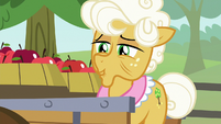 "Goldie Delicious ""it's hard to say for sure"" S9E10"