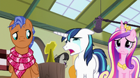 Shining Armor -it's small like her!- S7E3