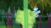 Swamp geyser bursts in front of Rainbow S8E17