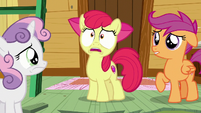 AB --then the Cutie Mark Crusaders don't have any reason to exist!-- S6E4