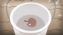 An apple being put into a bucket S4E07