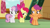 Apple Bloom --well, not exactly-- S6E19