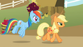 Applejack and Rainbow Dash S01E13.png
