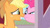 Applejack face-to-face with Pinkie Pie S01E25