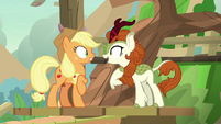 Autumn Blaze -that's what I said!- S8E23