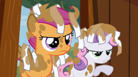 Dirty Scootaloo and Sweetie Belle S2E23