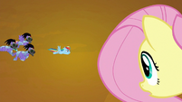 Fluttershy flying in Rainbow Dash's direction S9E2