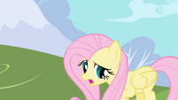 Fluttershy whispers her name again while backing away S1E01
