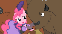 Pinkie Pie And A Buffalo S1E21