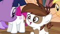 "Pipsqueak ""how to become a Cutie Mark Crusader"" S4E15.png"