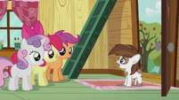 Pipsqueak wants the CMC to be their campaign managers S5E18