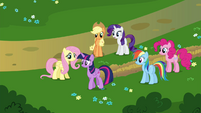Rarity -Another visit to the Castle of the Two Sisters, I presume-- S4E26