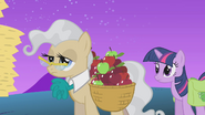 S01E11 Burmistrzyni nosi jabłka
