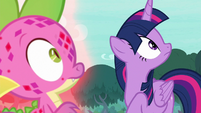 Twilight and Spike looking at the sky S8E11