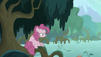 Fake Pinkie sitting by a Everfree forest swamp S8E13