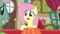 """Fluttershy """"oh, no!"""" S6E11.png"""