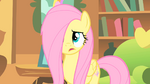 Fluttershy stressed S01E17
