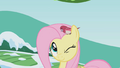 Fluttershy winking with bird on her head S1E11.png