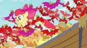 Murciélagos de frutas