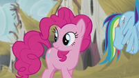 Pinkie looking back to the statue S5E8