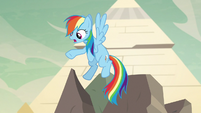 "Rainbow Dash ""he's about yea big?"" S7E18"