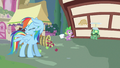 Rainbow Dash can't look S3E11.png