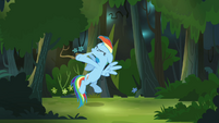 Rainbow Dash smacks herself again S4E04