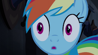 Rainbow Dash surpresa T4E03