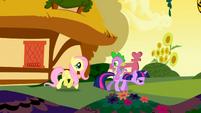 S01E01 Fluttershy idzie z Twilight i Spikiem przez Ponyville