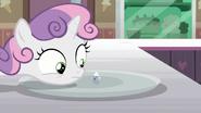 S07E06 Sweetie Belle patrzy na malutki deser lodowy