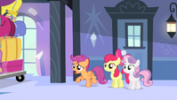Scootaloo -what's going on-!- S4E24