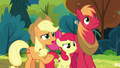 "Applejack ""the firewood salespony?"" S7E13.png"