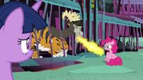 Chimera roasting Pinkie's marshmallow S8E26