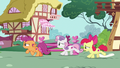 Cutie Mark Crusaders gallop after Gabby S6E19.png