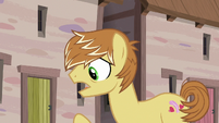 Feather Bangs -what should I say to them-- S7E8