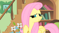 Fluttershy trying to guess S01E22.png