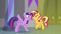 Princess Twilight -like the back of her hoof- EGFF