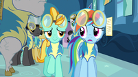 Rainbow Dash & partner S3E7