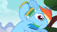 Rainbow Dash realize S2E8