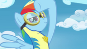 Rainbow Dash saluting the Pegasi S3E07
