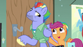 "Scootaloo ""so great!"" S7E7.png"
